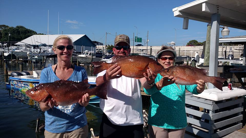 Offshore Snapper Report